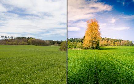 Før/efter redigering af landskabsbillede.